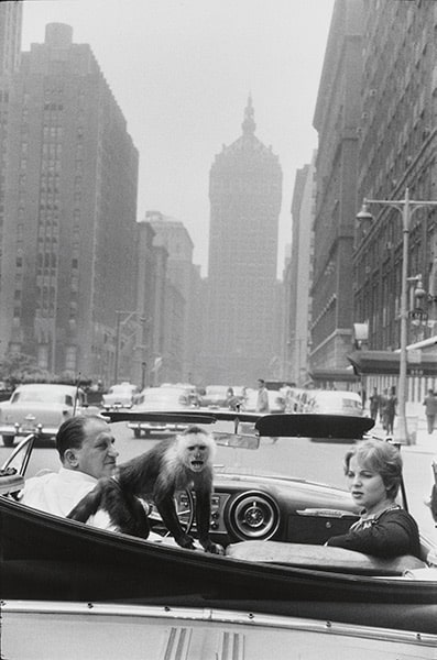 Garry Winogrand, Park Avenue