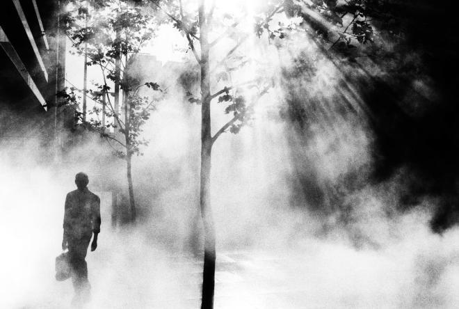 Trent Parke, Dream/Life