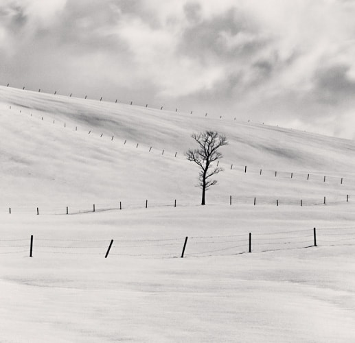 Michael Kenna, Japan