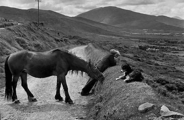 Ireland, 1952